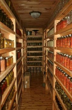 Ive always wanted to redo our basement and make one of the rooms into a food storage foom. I like this concept with canning.