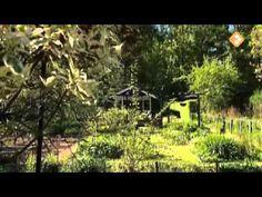 Een tuin vol vogels - Lente