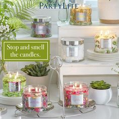 Find your signature in life and at home www.partylite.biz/kaisametcalfe