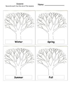 Seasons and Trees Activity - Free