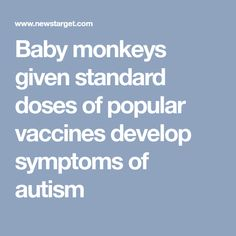 Baby monkeys given standard doses of popular vaccines develop symptoms of autism