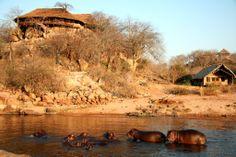 Ruaha National Park Tanzania