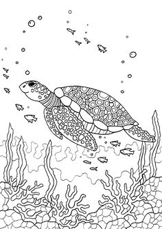 Free printable sea turtle adult coloring page. Download it