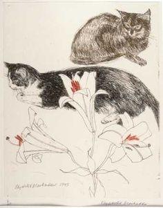 Elizabeth Blackadder British) - The Great Cat Illustrations, Illustration Art, Cat Paws, Pictures To Paint, Animal Paintings, Pet Birds, Birds 2, Crazy Cats, Pet Portraits
