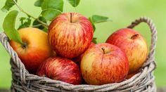 Top 7 power foods for diabetes #diabetes #powerfoods #health #delhi #Divasays