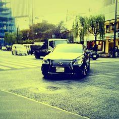 Kenichi Kamio - LEXUS from Today's piano piece  Nov.20th,2014  「レクサス」  国産高級車!