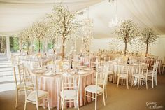 Discover more about elegant wedding centerpieces, Contact professionals near to the destination site to discover which flowers can easily be bought. Tree Centrepiece Wedding, Wedding Table Centerpieces, Wedding Marquee Decoration, Wedding Tables, Decor Wedding, Blossom Tree Wedding, Blossom Trees, Cherry Blossom, Marquee Wedding