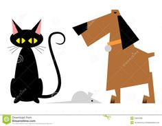 kat en hond stileren