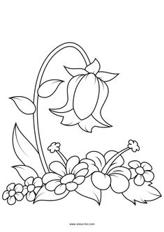 Free Flower Colouring Pages Colour Fun is part of Flower coloring pages - Simple Embroidery Designs, Hand Embroidery Patterns Free, Vintage Embroidery, Crewel Embroidery, Machine Embroidery, Printable Flower Coloring Pages, Pattern Coloring Pages, Coloring Pages For Kids, Coloring Book