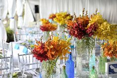 We love them! They are red and golden Mokara orchids. Her bouquet had Cymbidium orchids with blue delphinium, lime green roses and hosta foliage.
