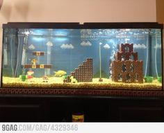Just an Aquarium...