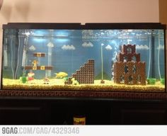 Just an Aquarium...