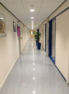 Commercial floor cleaning Cambridge - vinyl flooring
