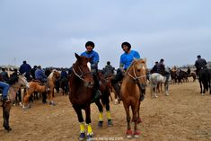 Actually, the Uzbek kupkari is an individual sport. But as often several hundred players compete against each other, some participants form small teams. If they win, they share the prize. Central Asia, Horses, Traditional, Sports, People, Animals, Hs Sports, Animales, Animaux