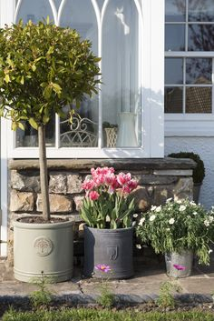 47 stunning small cottage garden ideas for backyard landscaping garden projects 01 stunning small cottage garden ideas for backyard landscaping - Homekover Small Cottage Garden Ideas, Cottage Patio, Cottage Homes, Cottage Gardens, Country Cottage Garden, Modern Cottage, Back Garden Design, Modern Garden Design, Patio Design