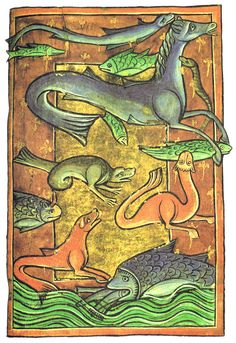 Hippocamp and other sea monsters, from a medieval Bestiary. art medieval