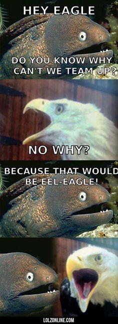 Hey Eagle...#funny #lol #lolzonline