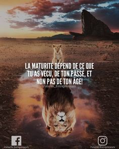 Words of Wisdom: Top 5 Motivational Quotes - Huisdecoratie 2019 Citation Entrepreneur, Entrepreneur Motivation, Motivational Quotes For Students, Motivational Thoughts, Harly Quinn Quotes, Ebook Amazon, Love One Another Quotes, Positive Energy Quotes, Online Job Search