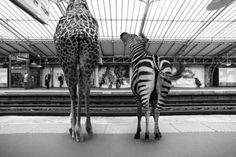 paris-metro-fotokunst-clarisse-bouthier-photo-design
