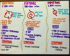 OF Hypo/Iso/Hypertonicity! OF Hypo/Iso/Hypertonicity! Nursing Board, Nursing Tips, Nursing Programs, Chamberlain College Of Nursing, Examen Clinique, Nursing School Notes, Nursing Schools, Nursing Cheat Sheet, Med Surg Nursing