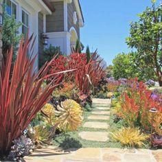 Garten Ideen Für Ein Tropisches Feeling Mit Hilfreichen Tipps