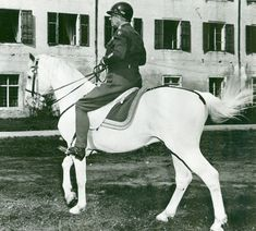 [Photo] George Patton riding the horse Favory Africa in Sankt Martin, Austria, 22 Aug 1945 Spanish Riding School, Lipizzan, George Patton, Show Horses, War Horses, White Horses, Horse Photos, Military History, Photos Du