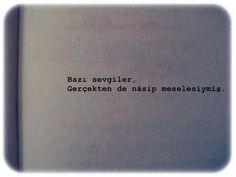 Nasip.