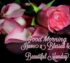Good Morning, Have A Blessed & Beautiful Monday Beautiful Monday, Good Morning Beautiful Images, Morning Images, Morning Pics, Morning Pictures, Beautiful People, Today Is Monday, Good Morning Tuesday, Monday Monday