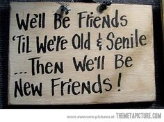 Good Funny Friendship Quotes | ... Quotes http://funny.homeip.net/funny-old-friendship-quotes-photos