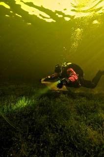 Een impressie van de schoonmaakactie van het duikgebied in Vinkeveen door Cees Kassenberg, nu online op http://www.duikeninbeeld.tv/duiken/artikel/schoon-duiken-in-vinkeveen/
