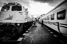 Train by ZhaqieBamz