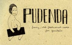 Learning Italian Language ~ Pudenda
