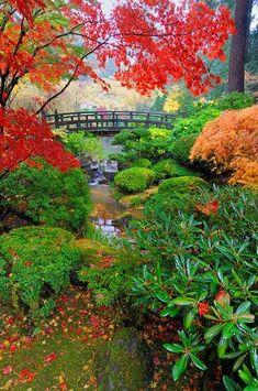 Stunning nature: Garden