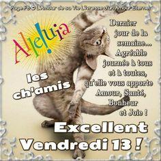 Illustrations, Photos, Cats, Animals, Facebook, Twitter, Good Friday, Everlasting Love, Bonheur