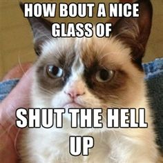 Grumpy Cat 1 - how bout a nice glass of shut the hell up
