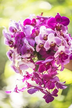 Purple Orchid Bouquet -- http://www.StyleMePretty.com/destination-weddings/2014/04/01/purple-costa-rica-destination-wedding/ Stories Wedding Photography - www.myweddingincostarica.com