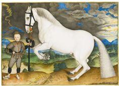 a rearing horse, held by a lavis     animals     sotheby's l13040lot6yzzxen