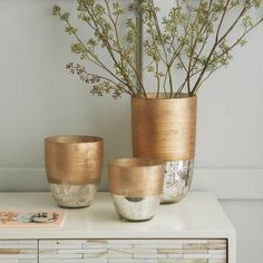 These sleek two-toned vases are perfect for showing off wintry boughs.