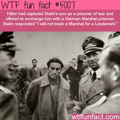 Stalin's son - WTF fun facts
