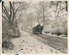 Cold snowy day 1931,