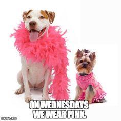 on wednesdays we wear pink.