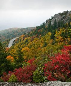 The Blue Ridge Parkway: The Great Smoky Mountains