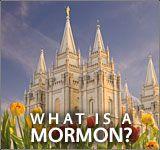 Mormon blog