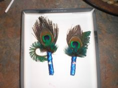 peacock+feather+boutonniere | Peacock Feather Boutonnieres : wedding blue boutonnieres bouts flowers ...
