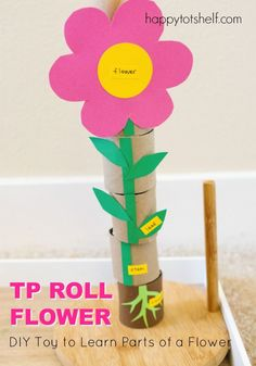 Make this toy to learn parts of a flower with TP rolls! Children 'grow' their flower by stacking the TP rolls. More ideas to extend learning here...