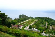 Oedo-Botania is a marine botanical garden located in Hallyeo Maritime National Park. It is 4 kilometers away from Geojedo Island. In 1969, Lee Chang-ho first came to this island to escape from the wind and waves as he was fishing. He and his wife created this breathtaking landscape with all the care for 30 years. In April, the island is covered with a plethora of flowers.