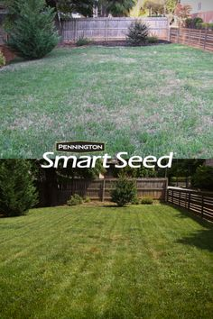 This drought-resistant grass seed uses less water year after year! This drought-resistant grass seed uses less water year after year! Garden Design Plans, Flower Garden Design, Outdoor Landscaping, Front Yard Landscaping, Landscaping Ideas, Landscaping Borders, Stone Landscaping, Hillside Landscaping, Backyard Landscape Design
