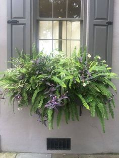 Best 15 Stunning Summer Planter Ideas to Beautify Your Home Awesome plant combinations for window boxes Container Gardening Vegetables, Container Plants, Container Flowers, Vegetable Gardening, Succulent Containers, Window Box Flowers, Balcony Flower Box, Window Planter Boxes, Planter Ideas