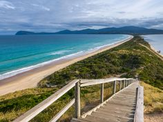 Food producers making everything from artisan cheeses to pork sausages have helped put this microcosm of Tasmania firmly on the map. Australia Capital, Bruny Island, Australian Capital Territory, Victorian Gardens, Unique Animals, Great Barrier Reef, Future Travel, Tasmania, Day Trips