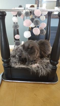 I made this cat bed for my friend, but my cat adopted it before I could give it to her. My cat loves to play with the Pom Pom balls hanging down. Carrie O.